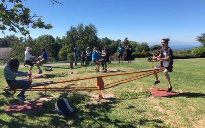 Team Event: Nanolive Celebrating Summer
