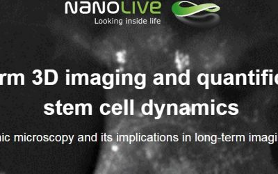 Watch our Webinar: Long-term 3D imaging and quantification of stem cell dynamics