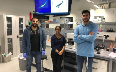 Nanolive supports EPFL's iGEM team