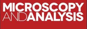 Microscopy and Analysis