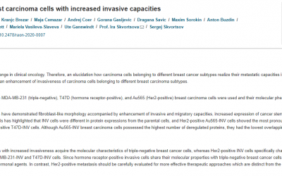 Molecular heterogeneity in breast carcinoma cells with increased invasive capacities