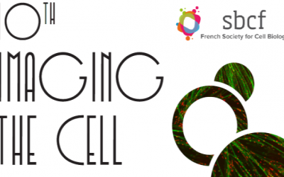 """Nanolive at """"10th Imaging the Cell"""" conference in Lyon, France this November 4-6"""