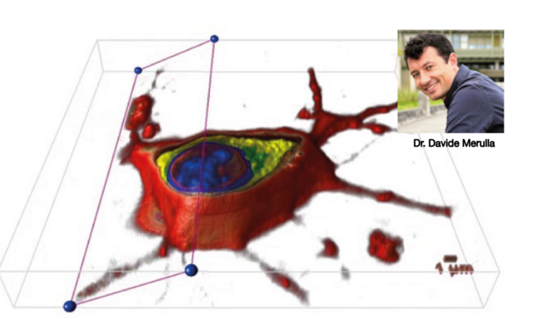 Join us for the first LIVE WEBINAR on the 3D CELL EXPLORER